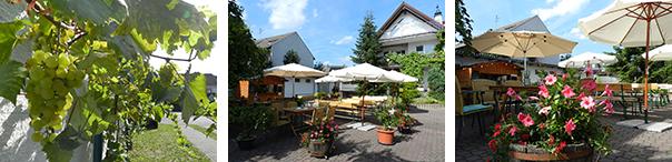 Weinhaus Schönfeld